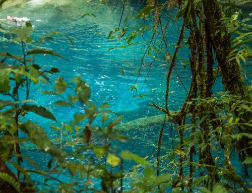 A Swim in Lake Kaco